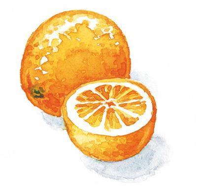 Fagiano con Lardo Aurora in salsa di arancia